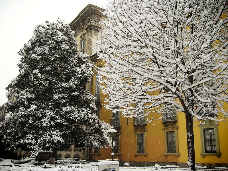 Snowsmall18