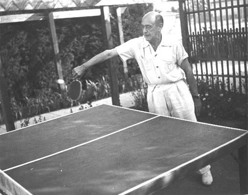 Schonberg table tennis