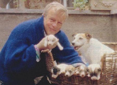 Flengo and puppies