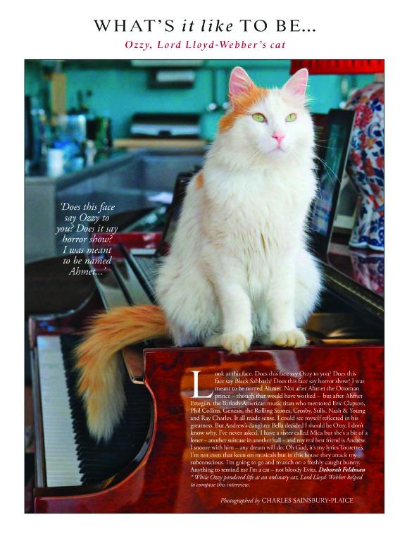 Andrew lloyd weber cat ozzy