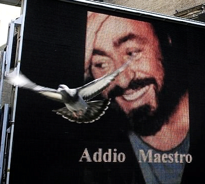 Addio_maestro