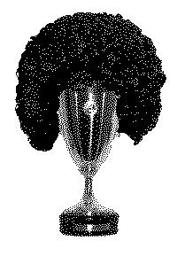 Afrocups